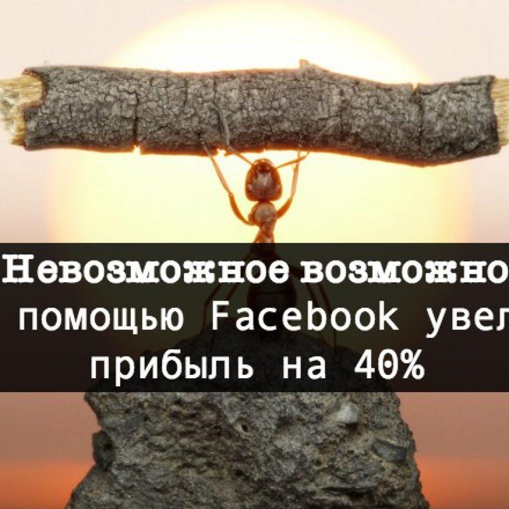 Кейс 2 kak-s-pomoshhyu-Facebook-uvelichit-pribyl